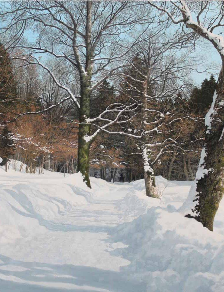 hiver-aux-environs-de-sixt-8p